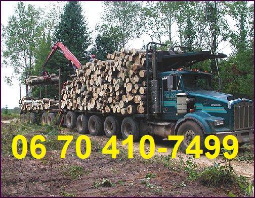 Tüzifa kamiontételben Románia