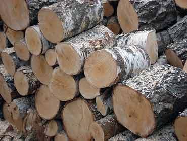 Eladó tűzifa kugliban Dunabogdány