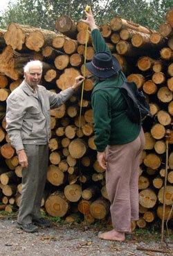 1 köbméter fa hány mázsának felel meg